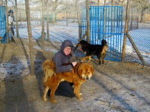 Hugs with Aslan, proud father of many of the Foundation's Bankhar puppies.